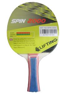 Lifting Spin 2000