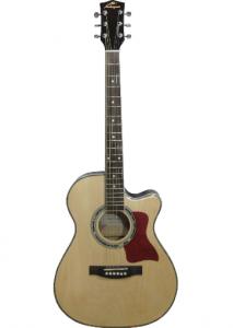 MF-20 CE NT
